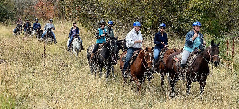 group riding horses