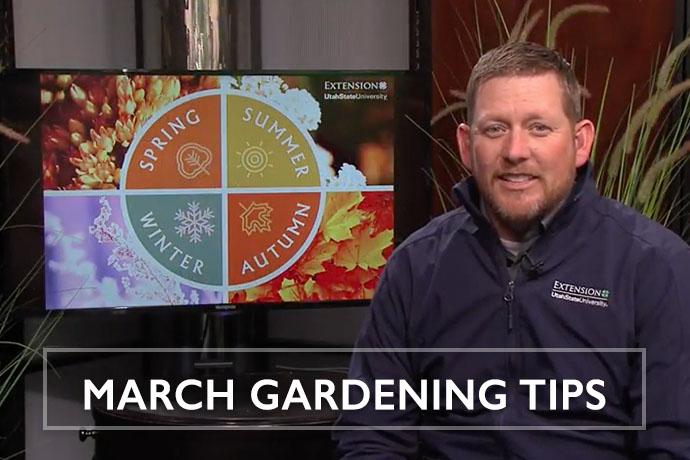 March Gardening