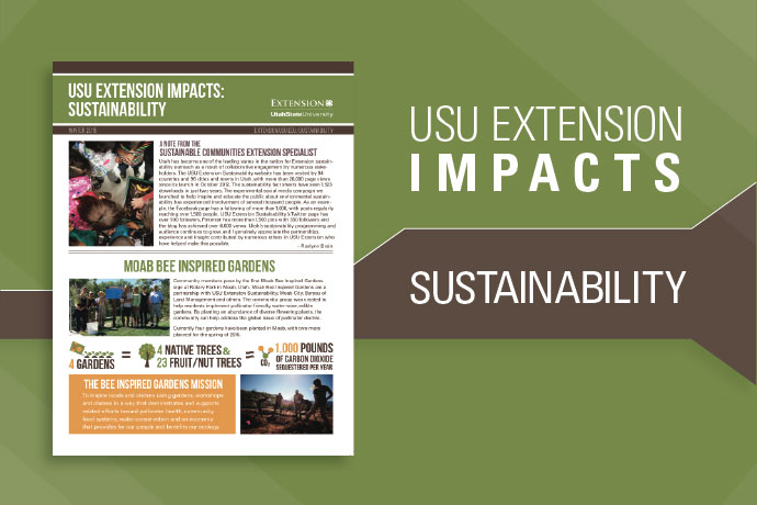 Sustainability Impacts