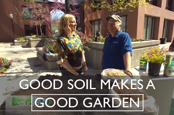 Good Soil Makes a Good Garden