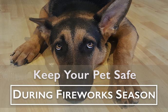 Keeping Pets Safe During Fireworks Season