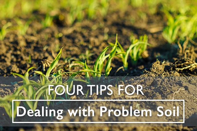 Problem Soil