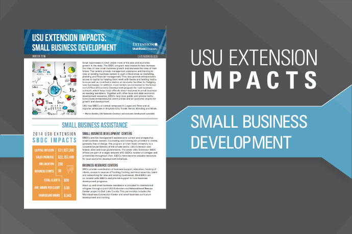 Small Business Development Impacts