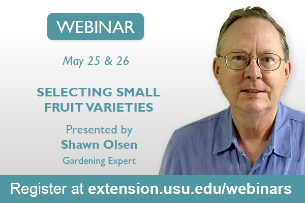 Webinar: Selecting Small Fruit Varieties
