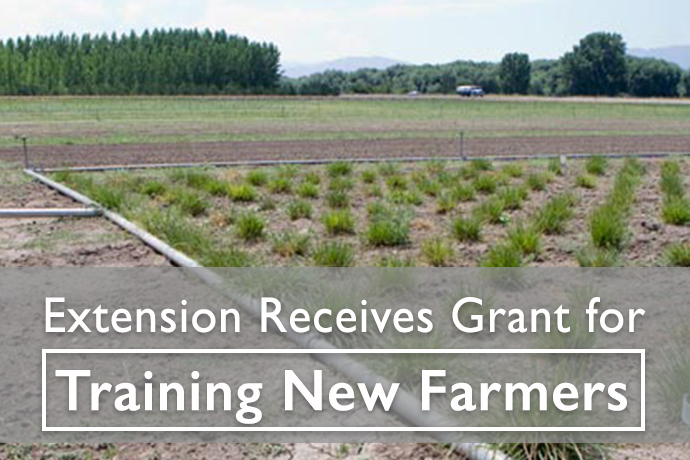 Training for New Farmers Grant