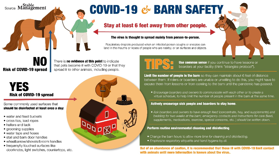 Barn Safety