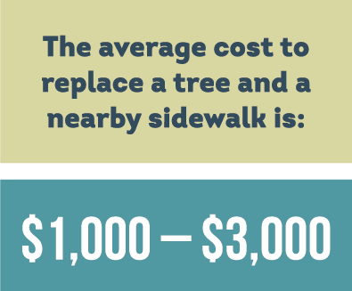 trees and sidewalks cost
