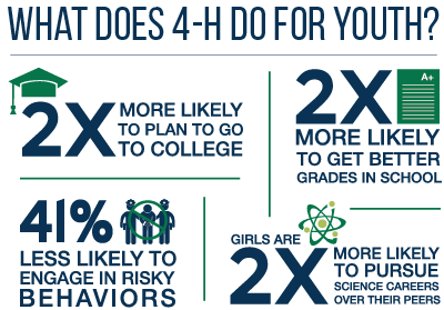 What does 4h do for youth