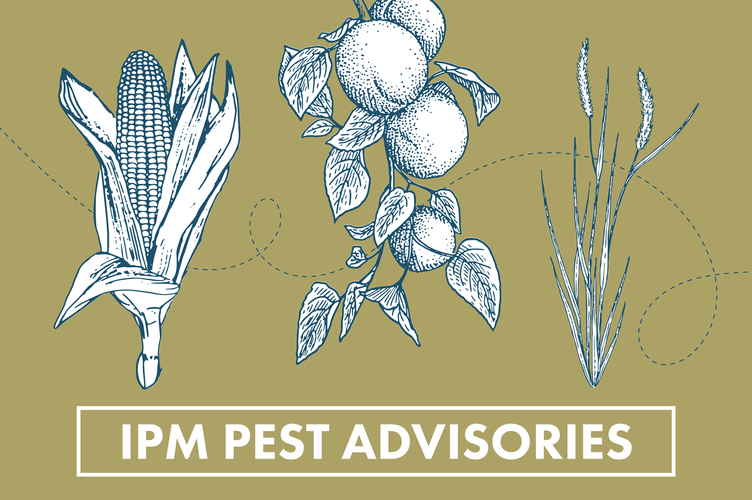 IPM Pest Advisories