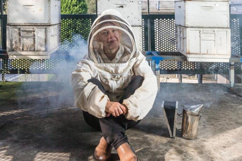 Dangerous bee virus might be innocent bystander