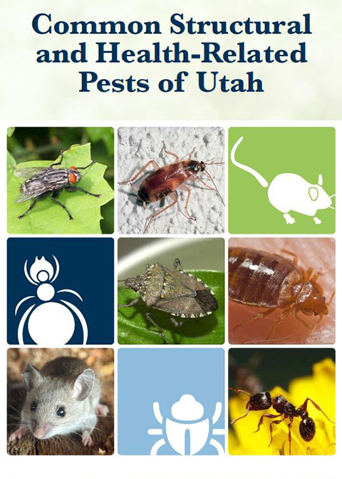 Structure and Health Pests Guide Cover Image