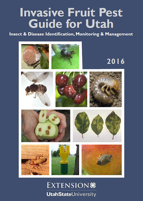 Invasive Fruit Pest Guide Cover Image
