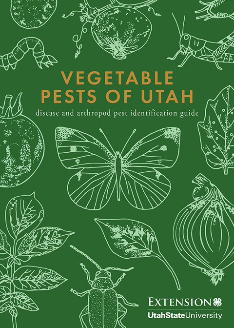 Vegetable Pest ID Guide Cover Image