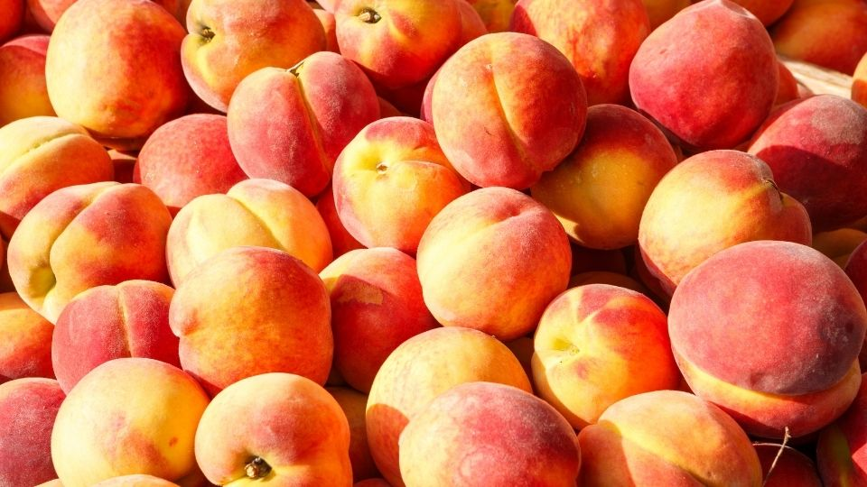 Preserve the Harvest: Peaches