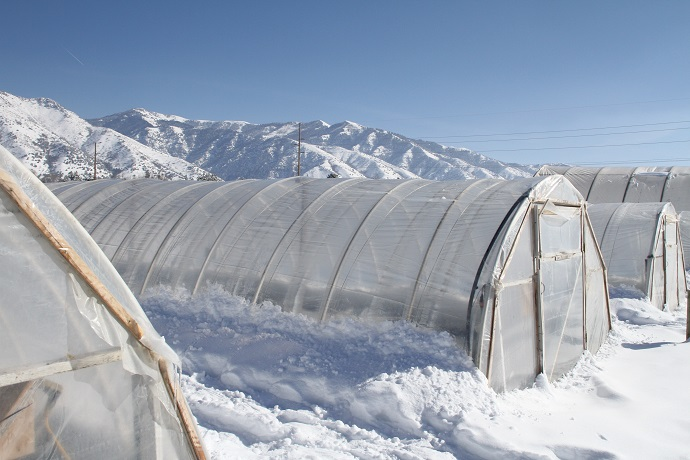 High tunnels in snow