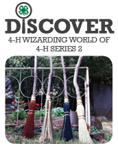 Wizarding World of 4-H Series 2