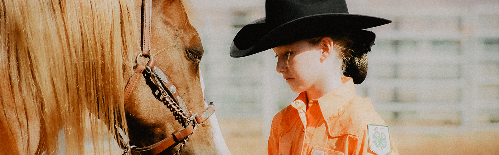 4-H member with her horse