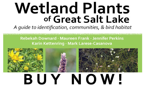 purchase button for Wetland Plants of Great Salt Lake