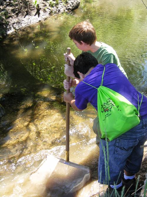 Boys collecting macroinvertebrates