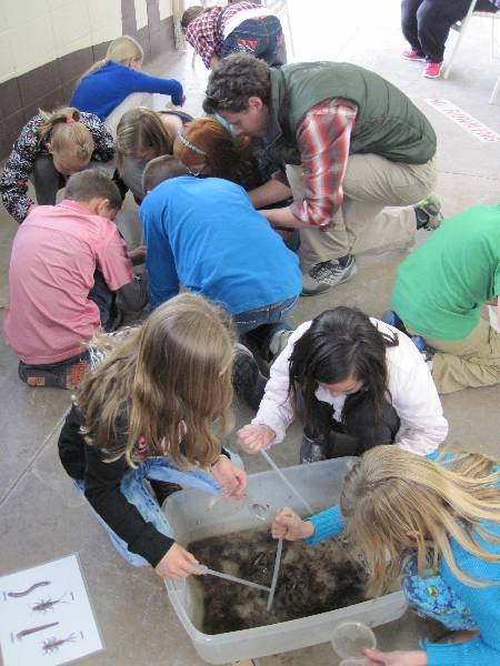 Iron County Water Fair macroinvertebrate activity