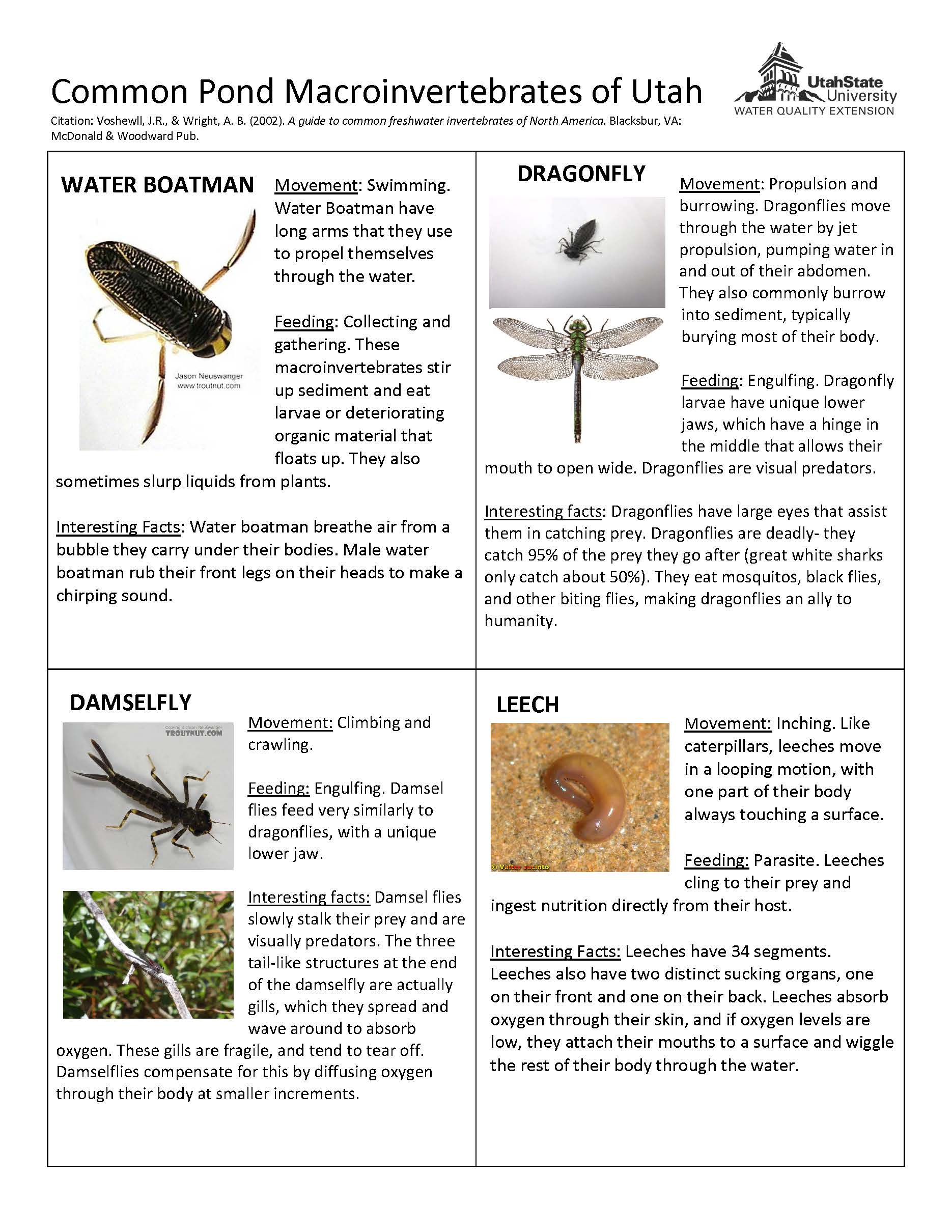 Pond macroinvertebrate guide for Utah