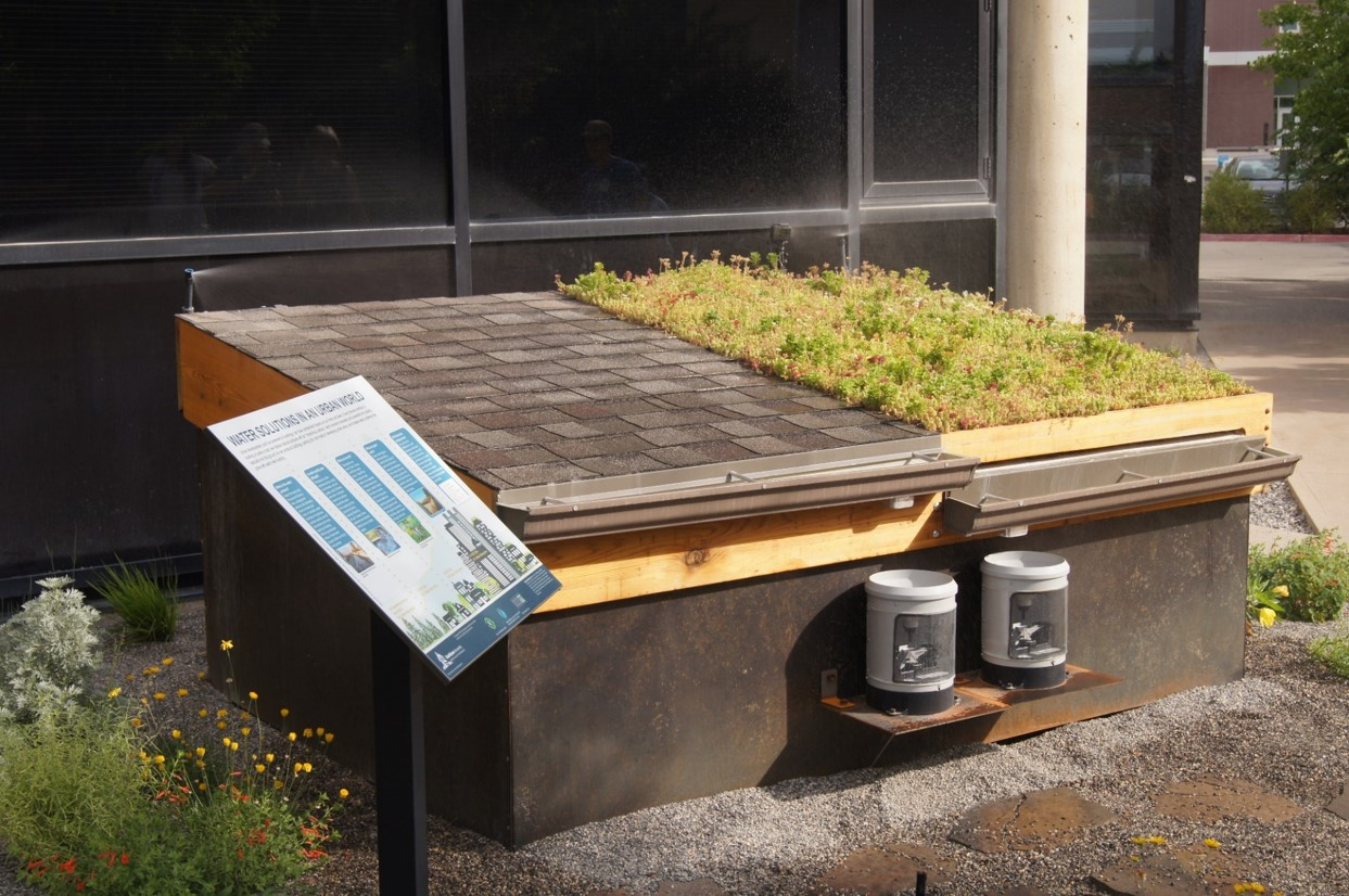 Green Roof Display