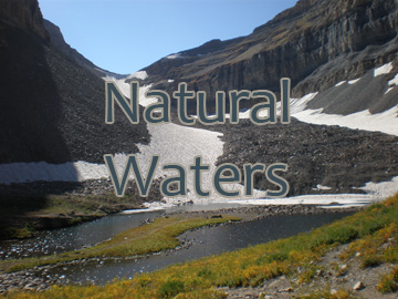 Natural Waters