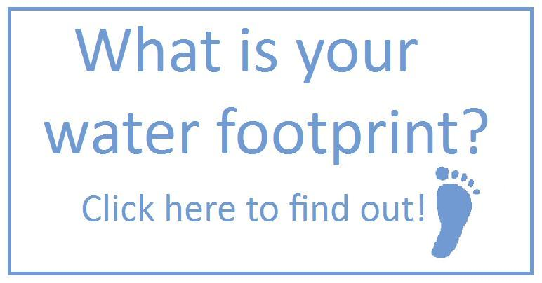 Water Pollution Lesson Plans – Watershed Worksheet